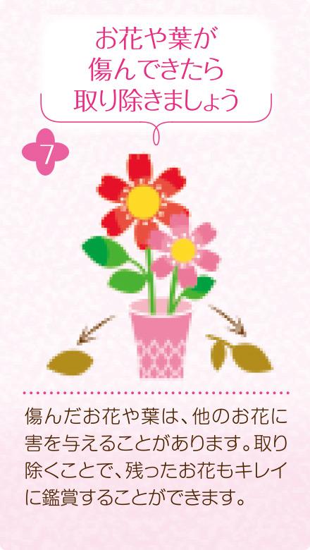 7.お花や葉が傷んできたら取り除きましょう。傷んだお花や葉は、他のお花に害を与えることがあります。取り除くことで、残ったお花もキレイに鑑賞することができます。